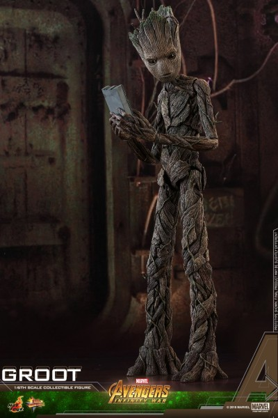 Hot Toys - Groot - Avengers: Infintiy War