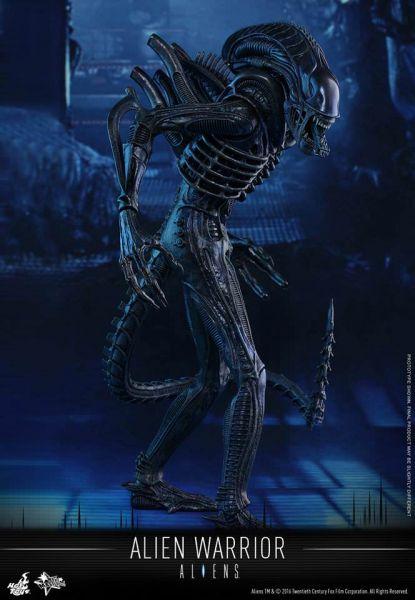 Hot Toys - Alien Warrior - Aliens