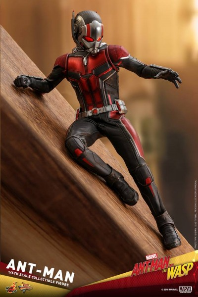 Hot Toys - Ant Man - Ant Man and the Wasp